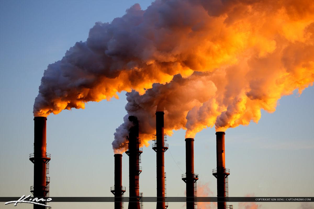 pollution global warming essays Advertisement essays animal world essays big five essays cigarette effects of global warming essay on global global warming and pollution are destroying the.
