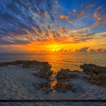 Explosion of Colors at the Beach in Coral Cove Park Tequesta Flo