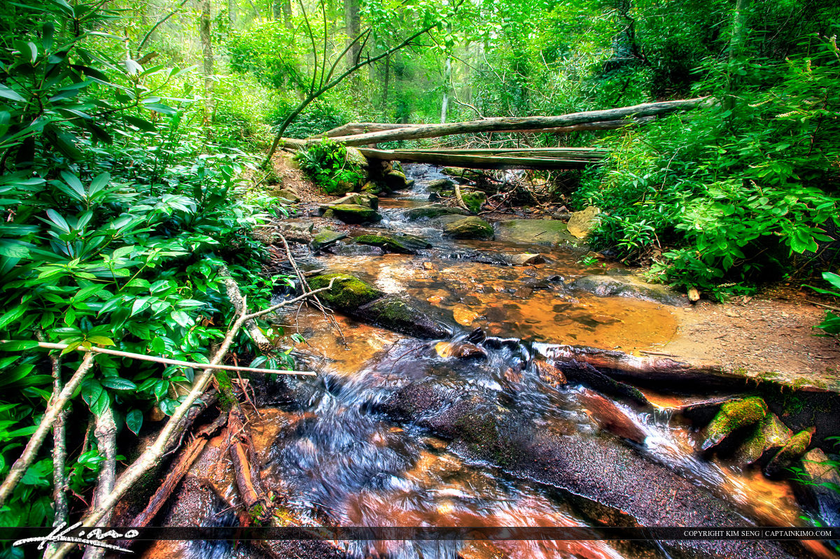 Creek at Cascades Falls North Carolina Blue Ridge Parkway
