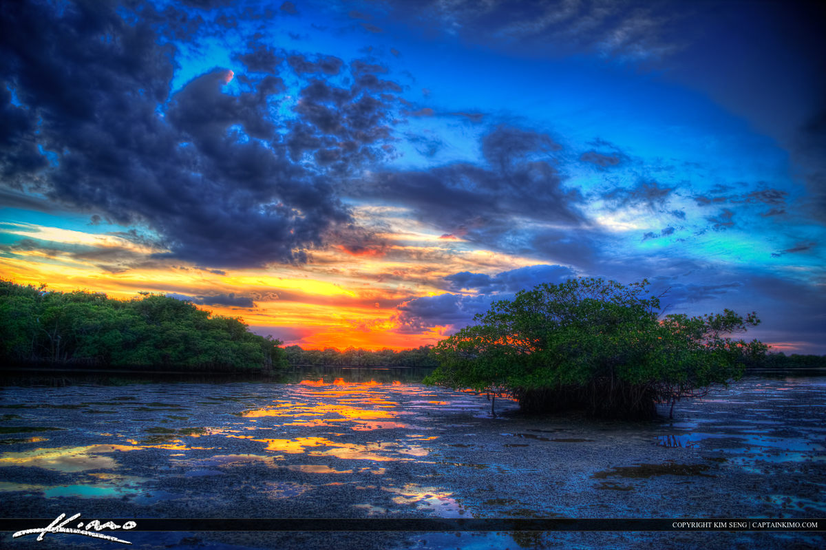 Mangrove Sunset Singer Island MacArthur State Park