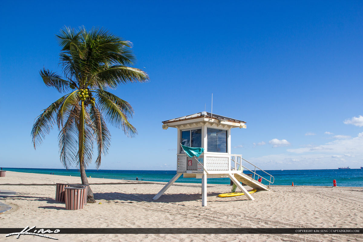 Fort Lauderdale Lifeguard Tower and Palm