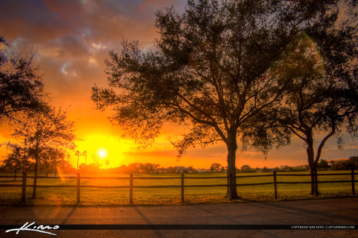 Riverside Park Sunset Oak Tree Vero Beach Florida Indian River
