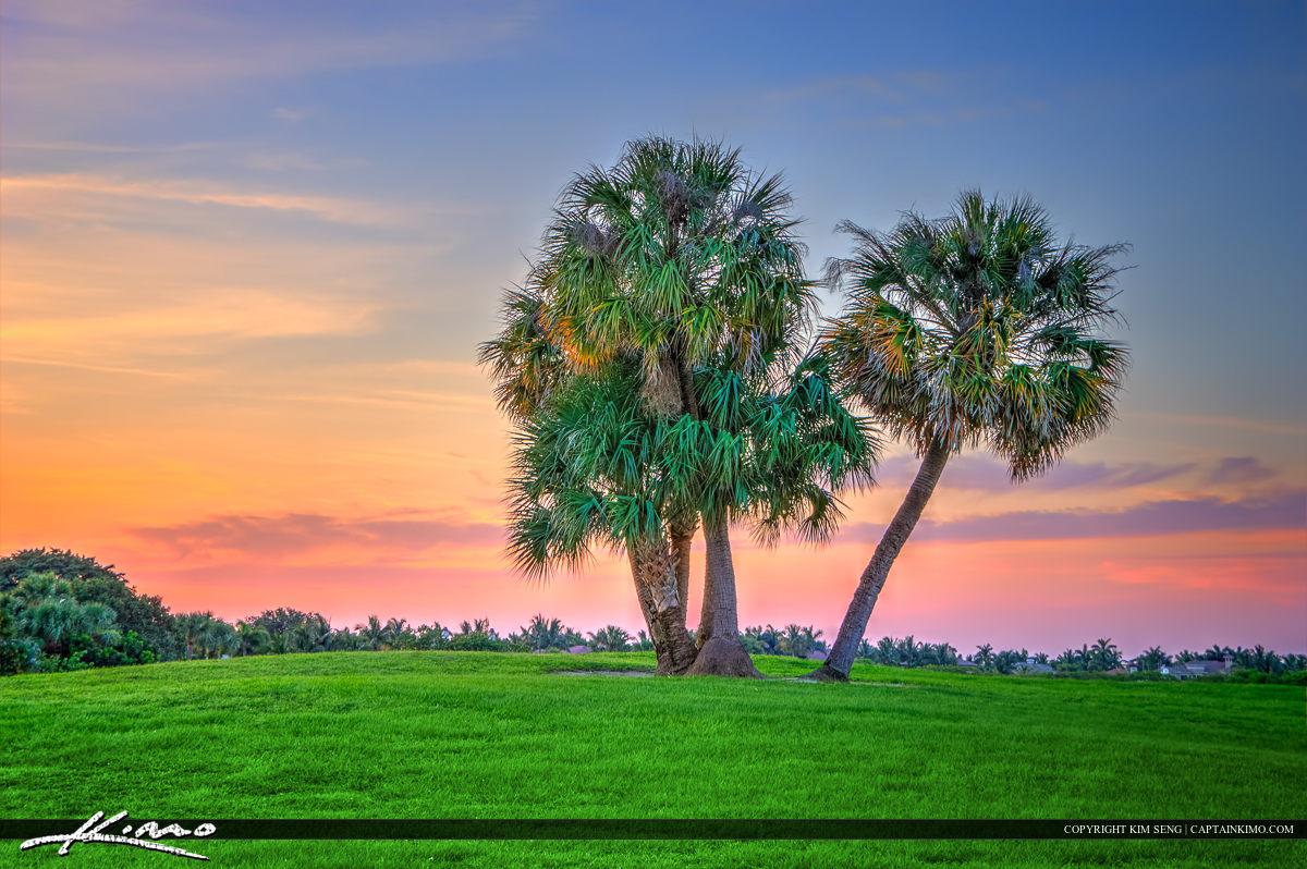 Palm Tree Golf Course North Palm Beach Florida