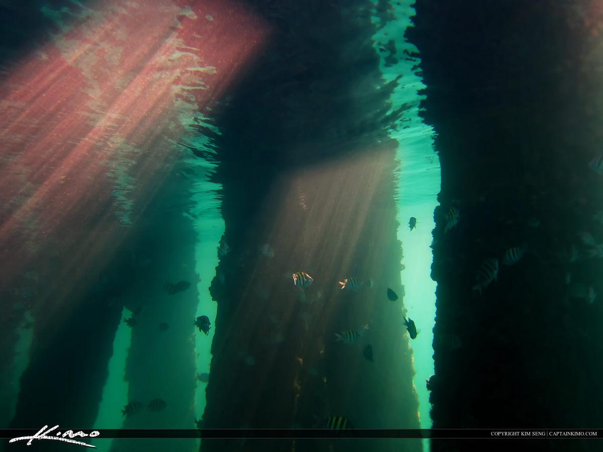 Pillars of Light Underwater Photography Snorkeling