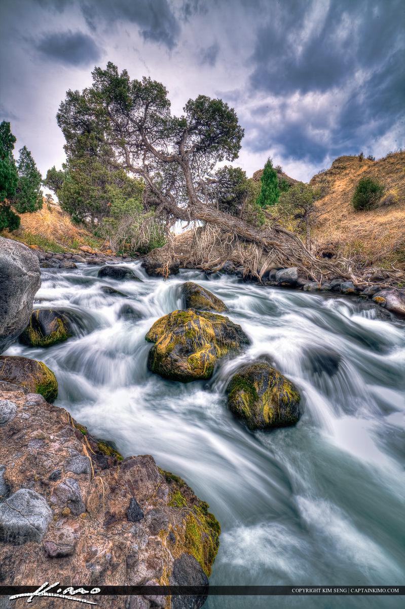 Waterfall River at Yellowstone National Park