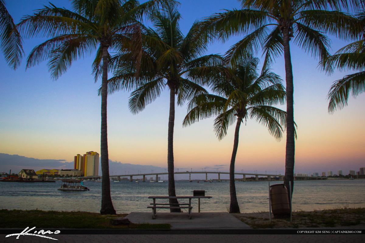 Peanut Island Coconut Tree Picnic Area