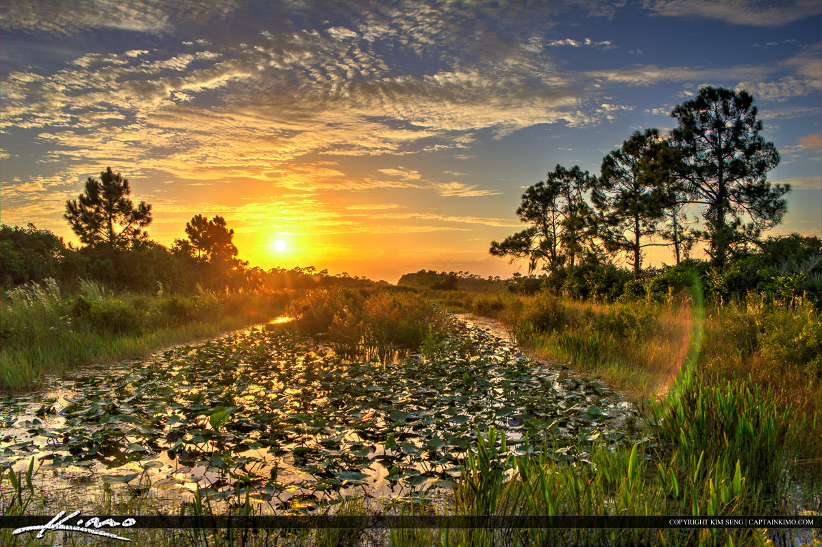 Sunset Over the Canal in Palm Beach County