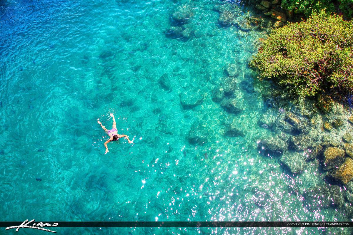 Snorkeling at Jupiter Island Florida Clear Waters