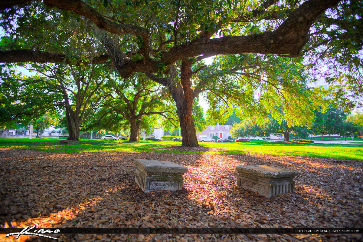 Park in Downtown Orlando Florida with Oak Trees