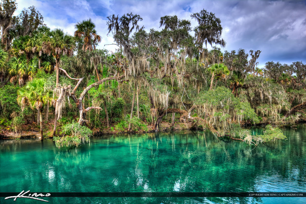 Blue Springs State Park Orange City Florida