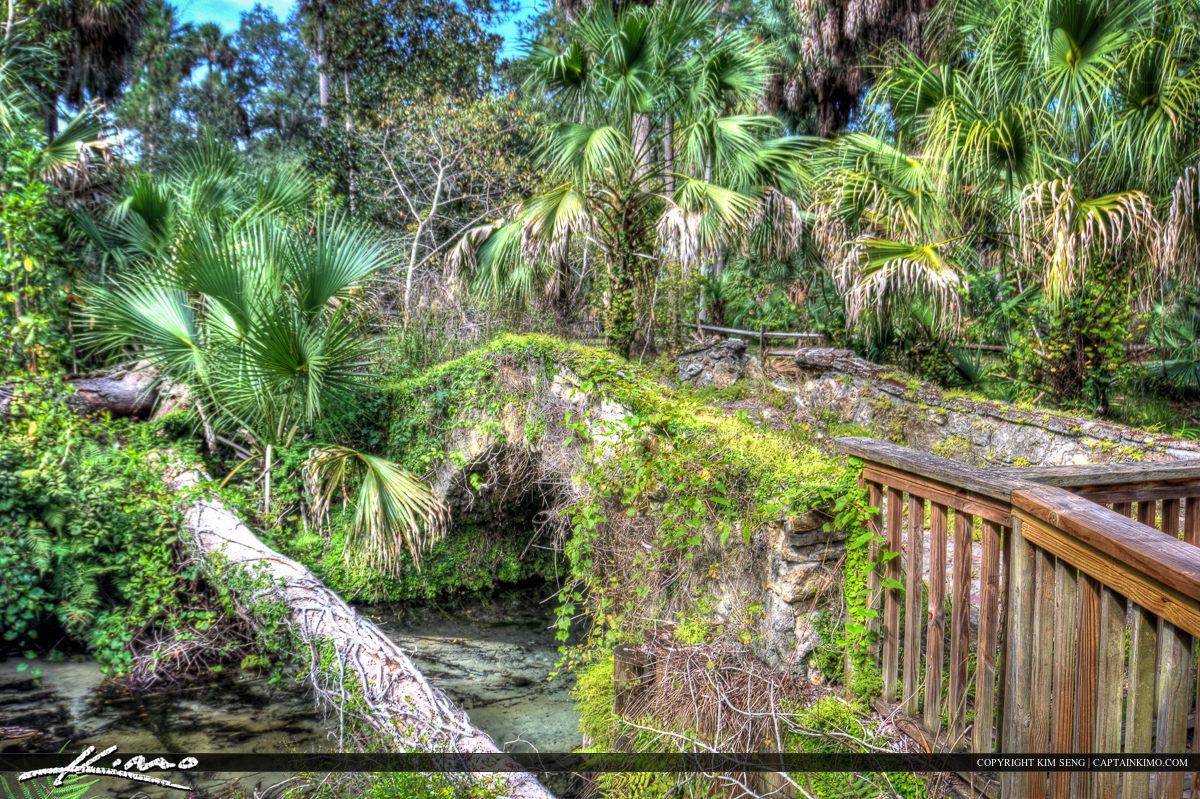 Juniper Springs Florida Arch Bridge
