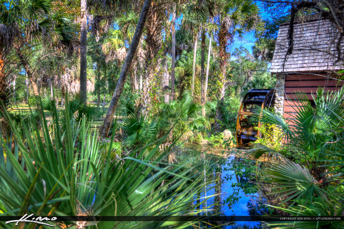 Juniper Springs Florida Water Mill