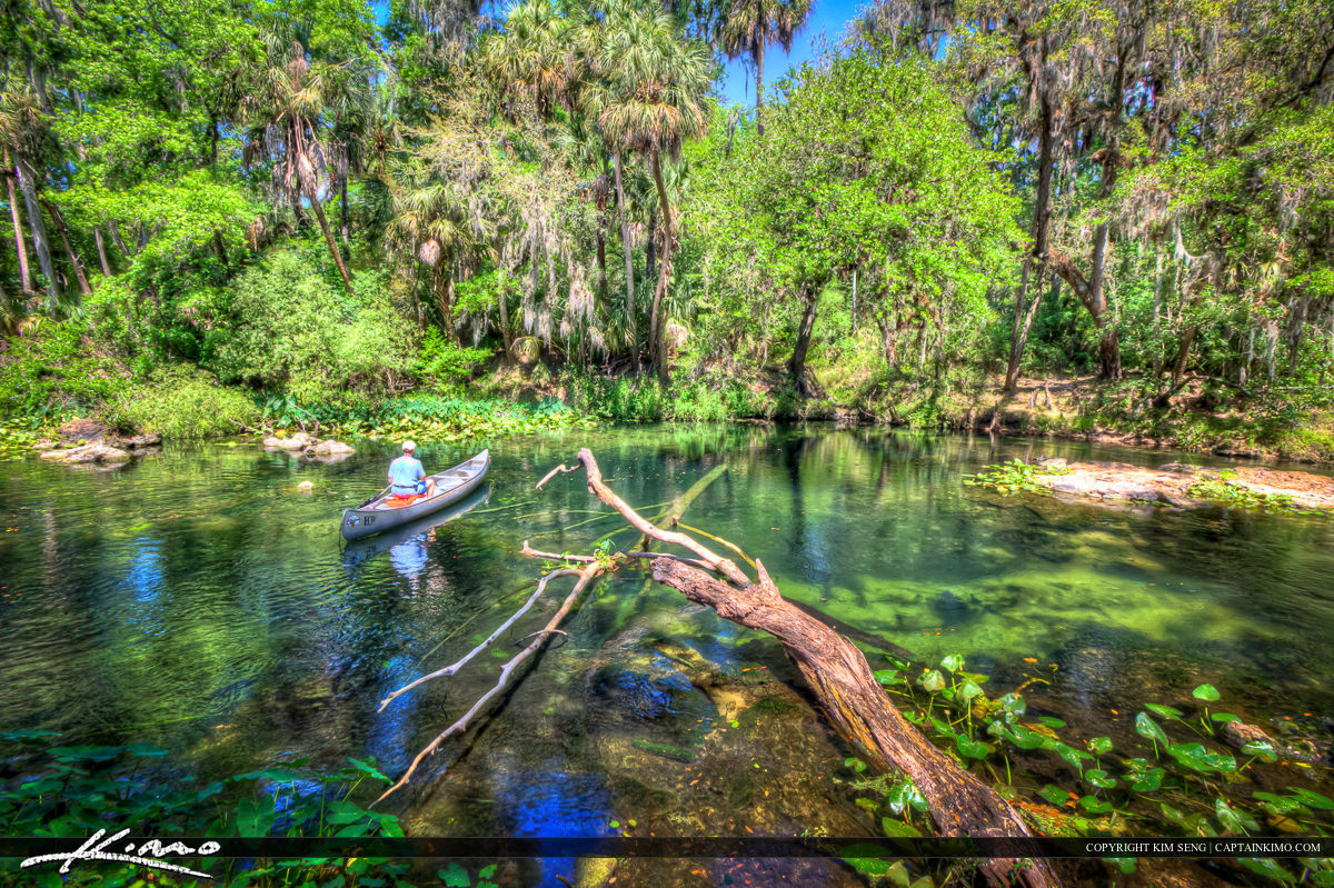Canoeing the Hillsborough River State Park Florida
