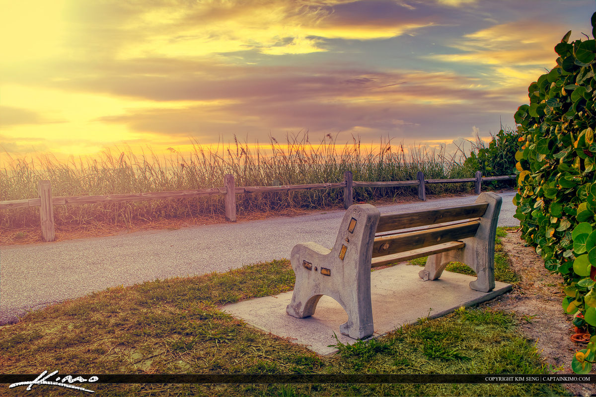 Bench at the Beach Watching the Sunrise Florida