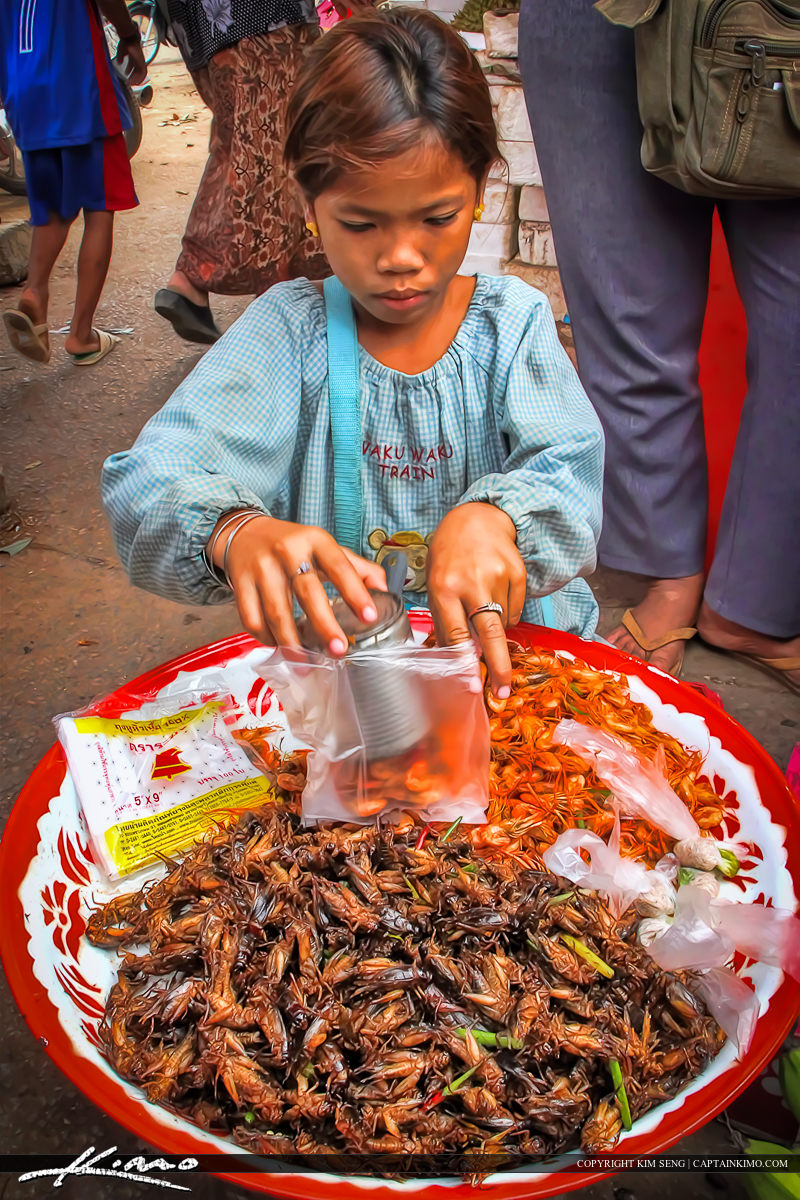 Girl in Cambodian Market Selling Fried Crickets