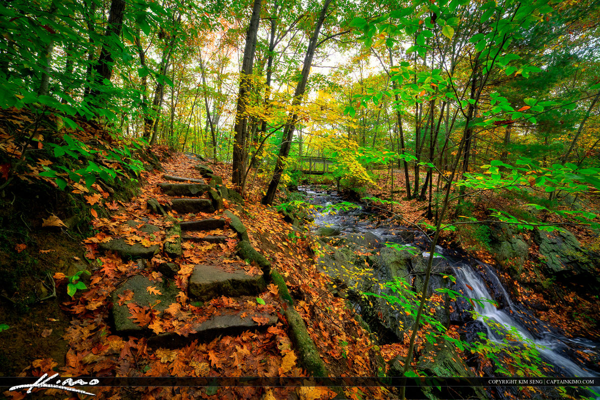 Rock Steps on Trail at Fore River Sancturay in Jewell Falls