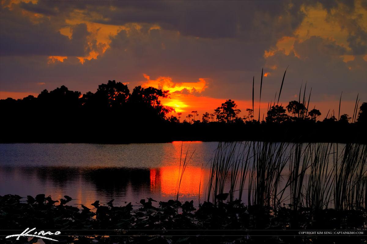 Sunset at Hungryland Slough Jupiter Florida