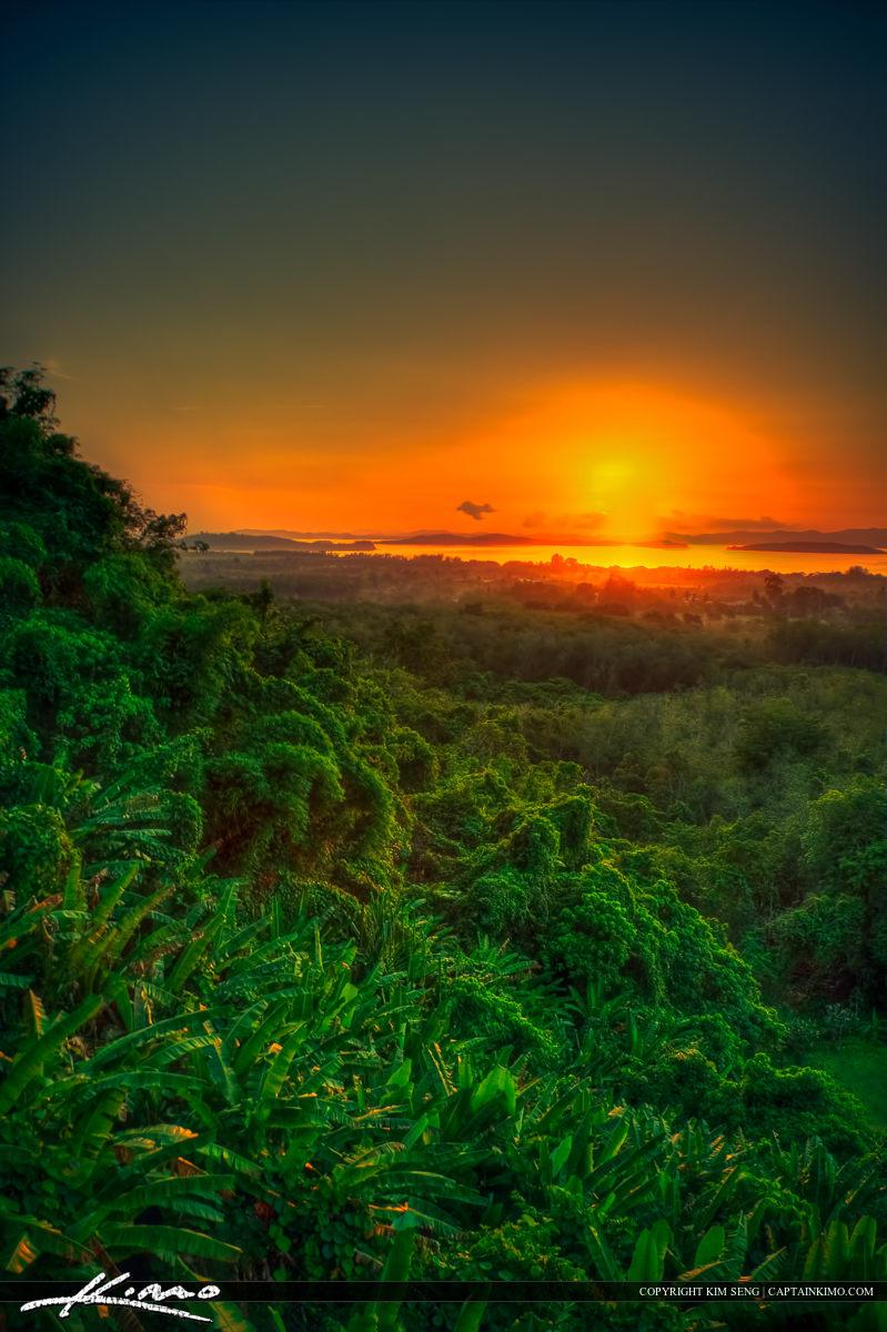 Sunrise Over Rain Forest in Phuket Thailand