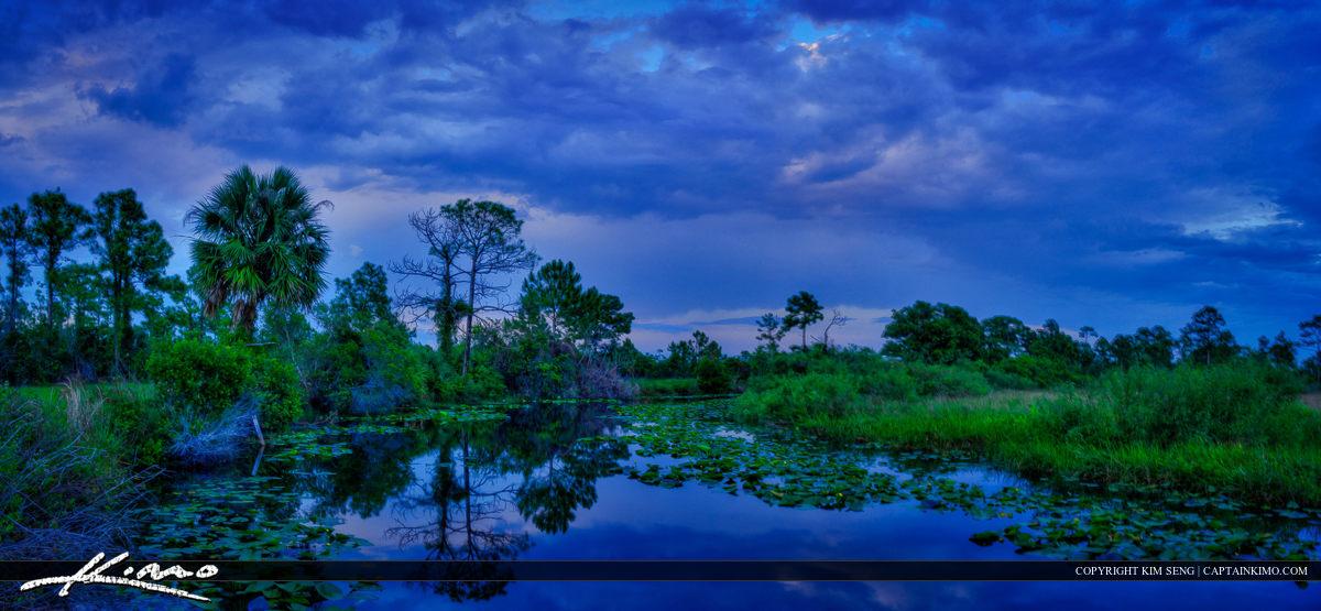 JW Corbett WMA Wetland Canal During Stormy Evening Light