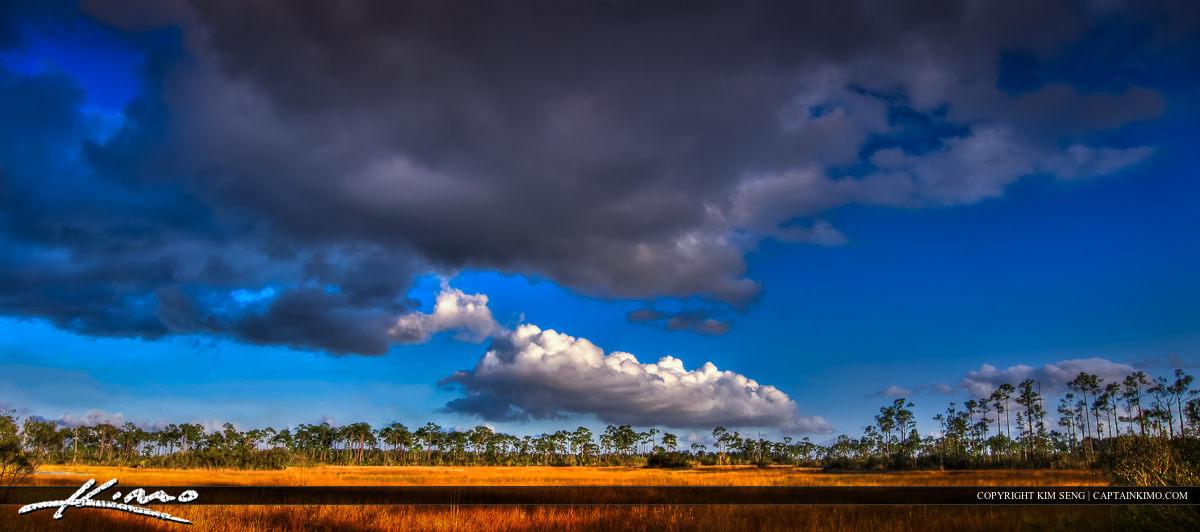 Panorama from JW Corbett WMA Wetlands Prairie