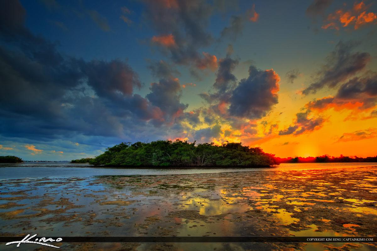 Mangrove Island at Lake Worth Lagoon During Sunset