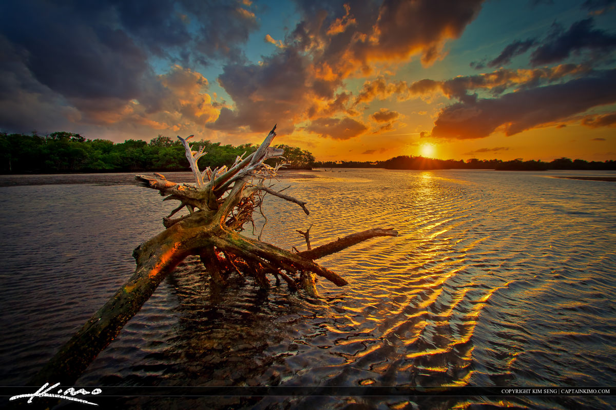Captain Kimo's Driftwood from Lake Worth Lagoon During Sunset