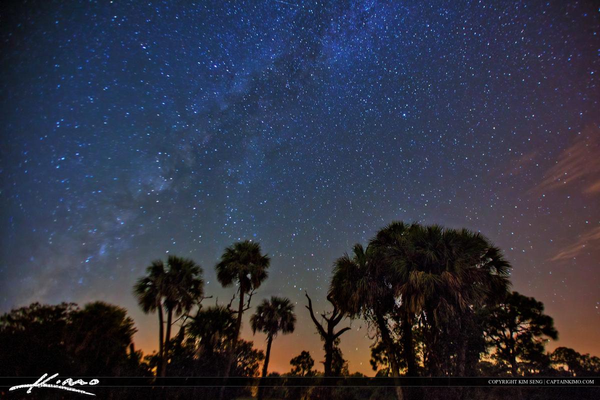 Florida Starry Night Under the Milkyway