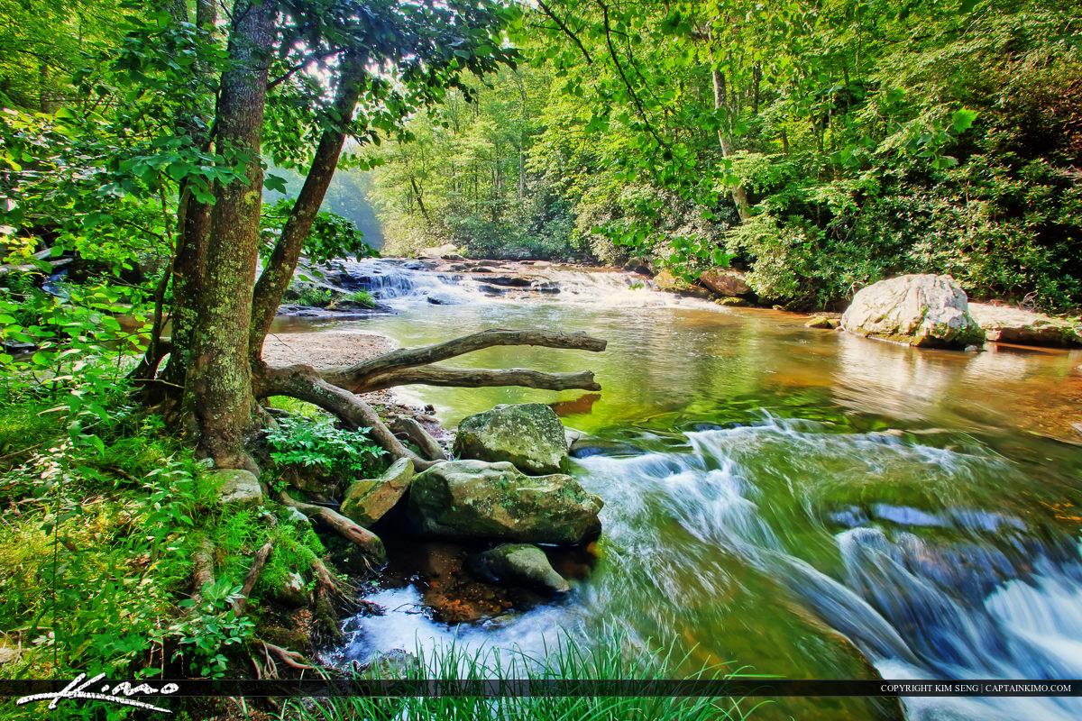 beautiful creek in north carolina next to blue park ridgeway