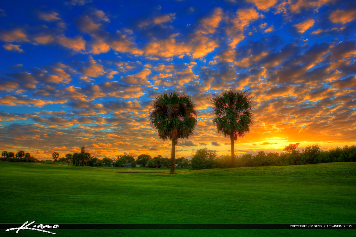 Golf Course Sunset at North Palm Beach Over Palm Tree