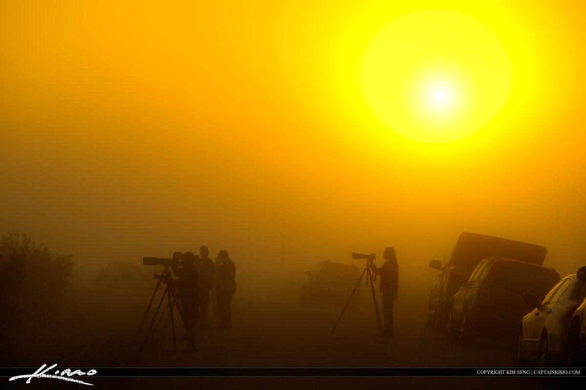 Photographers in Mist at Viera Wetlands Melbourne Florida