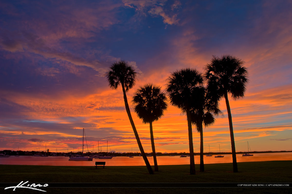 Sunrise Over Palm Trees at Lake Worth Lagoon in North Palm Beach