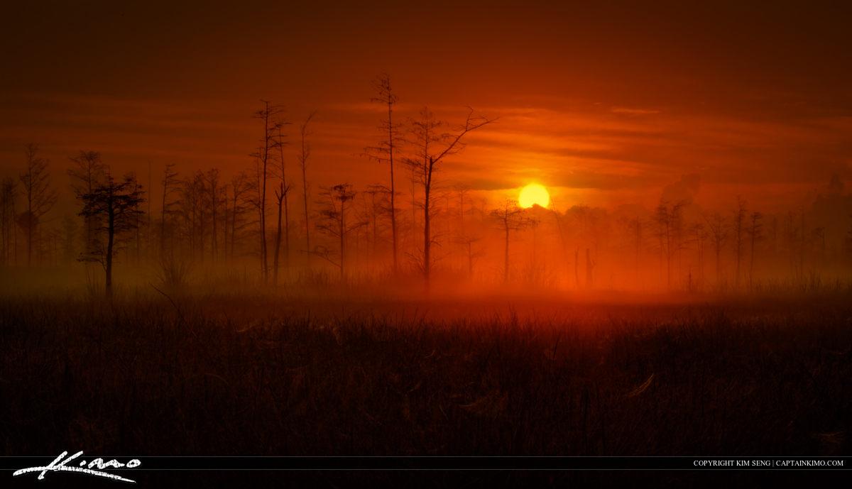 Burning Sun Engulfing Wetlands in Florida