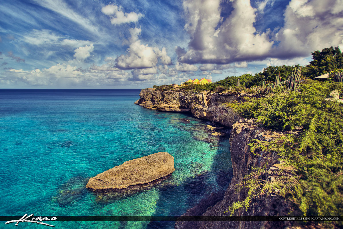 Curacao Island Rock Plant Blue Waters Cloudy Day