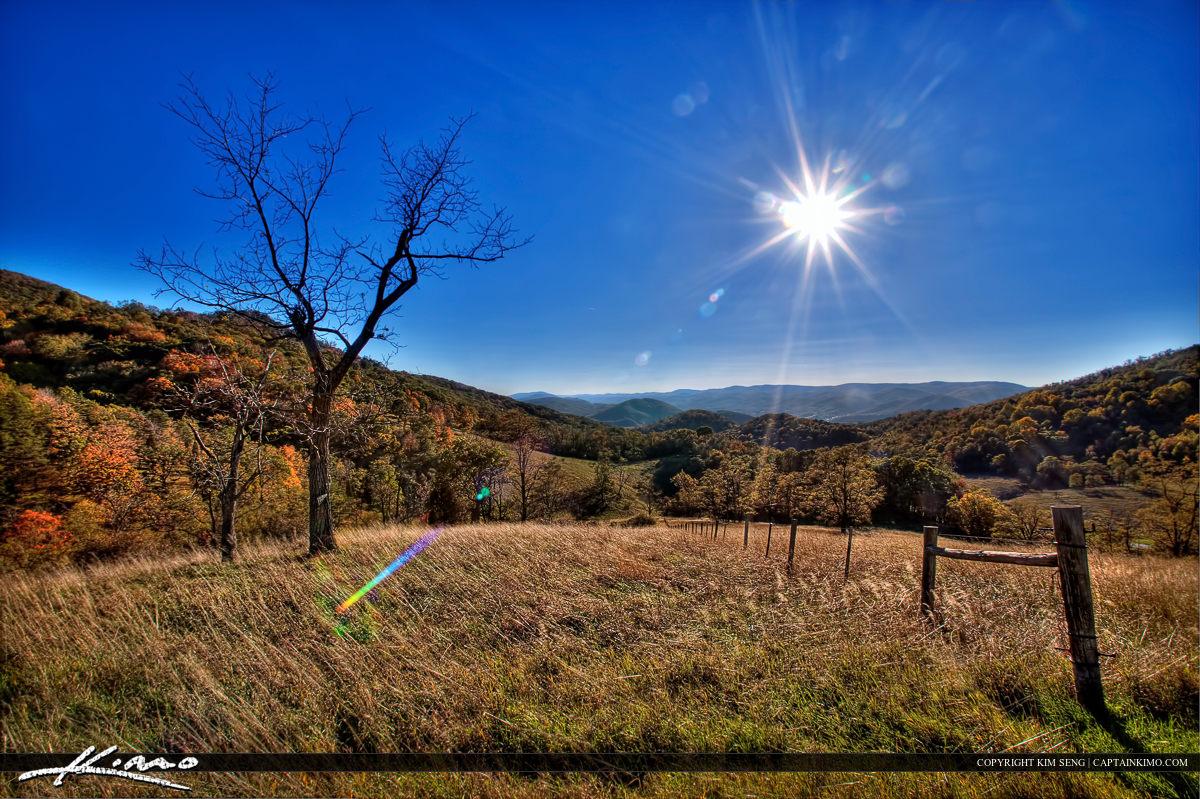 West Virginia Dead Tree Autumn Mountain BlueSky Sun Flare