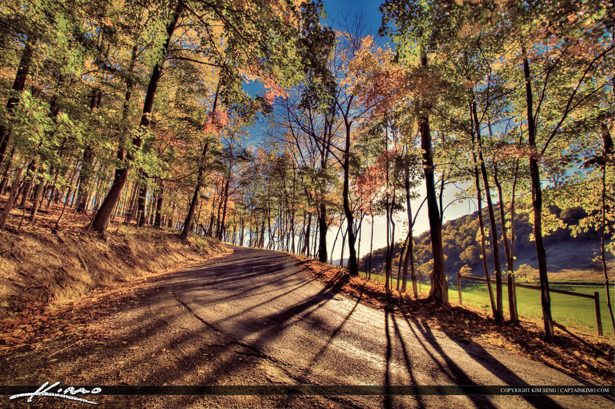 West Virginia Cury Mountain Road Autumn Leaves