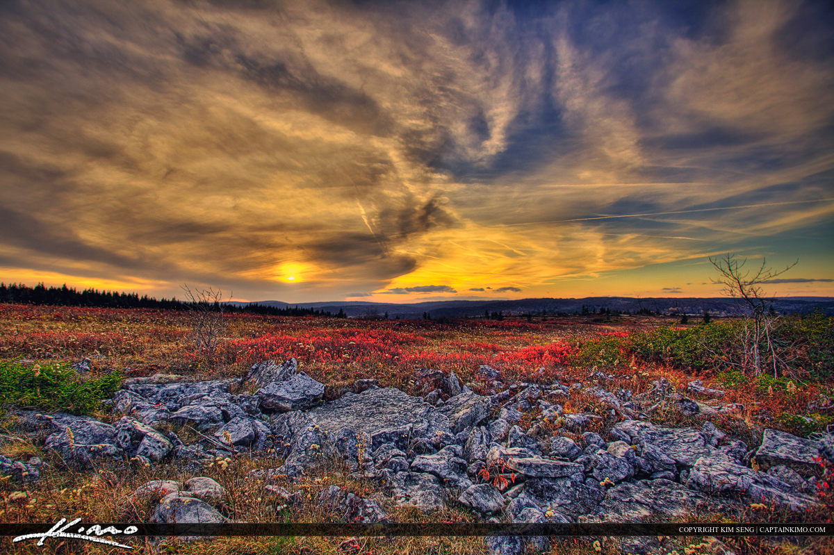 Dolly Sods Wilderness West Virginia Sunset Mountain