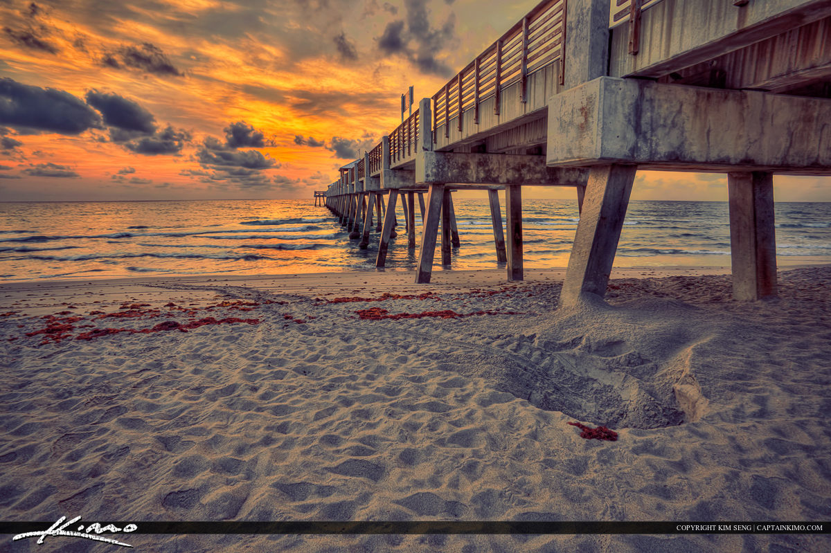 Juno Beach Pier Sunirse Sea Turtle Nest Florida