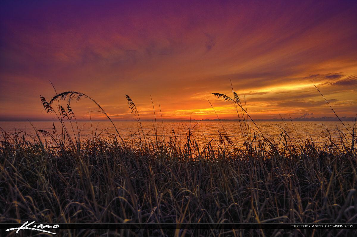 Coral Cove park Purple Sky Sunrise Seaoats