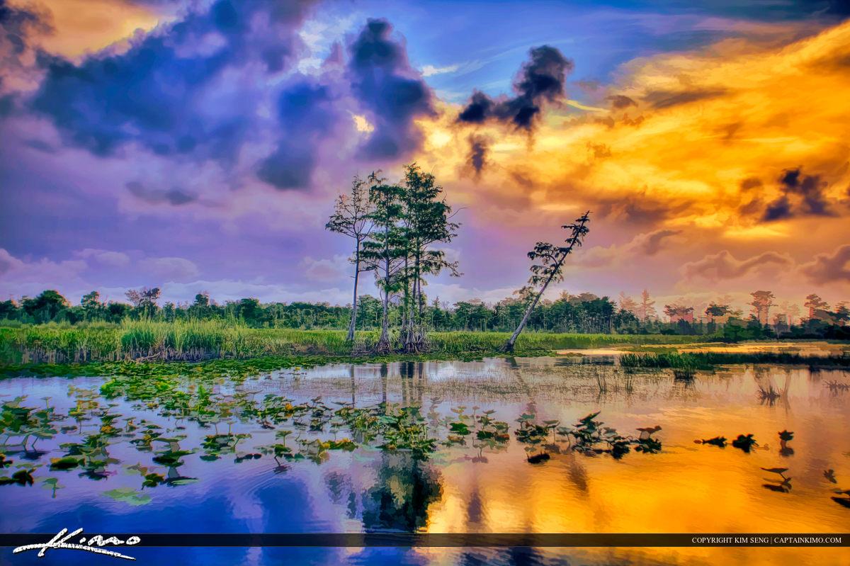 Loxahatchee Slough Wetlands Everglades Natural Preserve