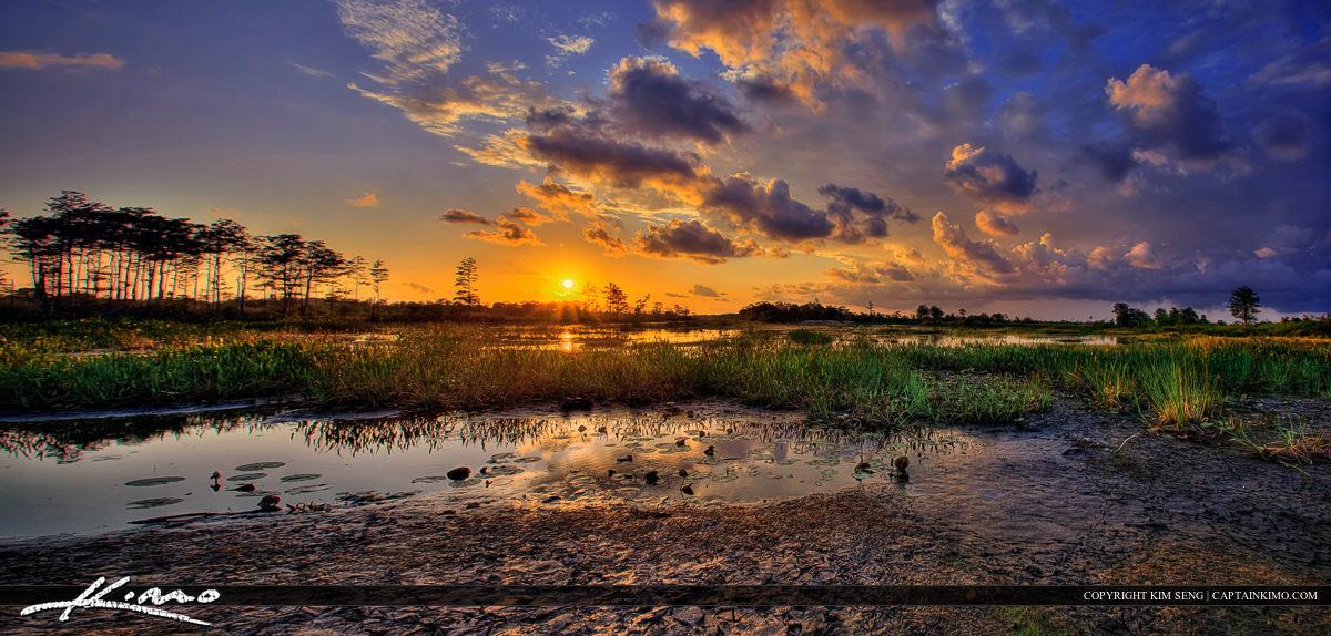 Loxahatchee Slough Sunset Wetlands Everglades