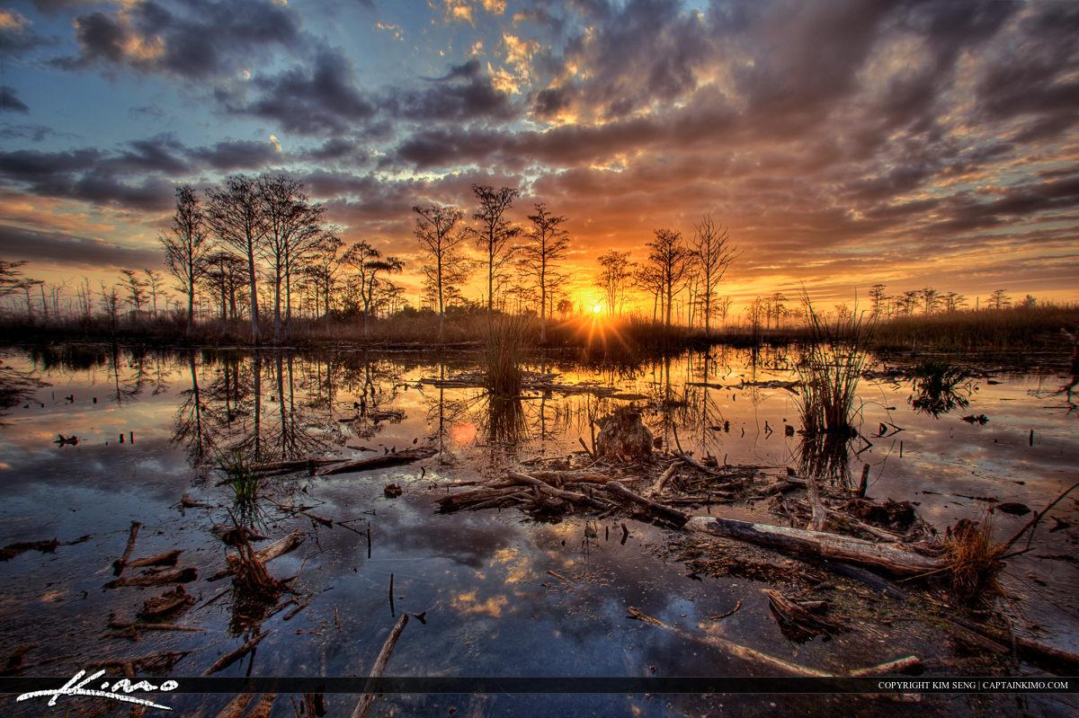 Sandhill Crane Park Wetlands Florida Sunrise