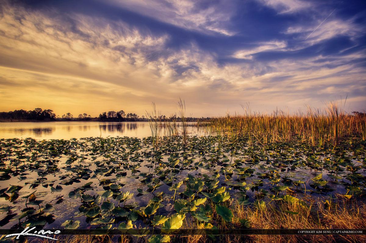 Hungryland Wetlands Sunset Jupiter Farms