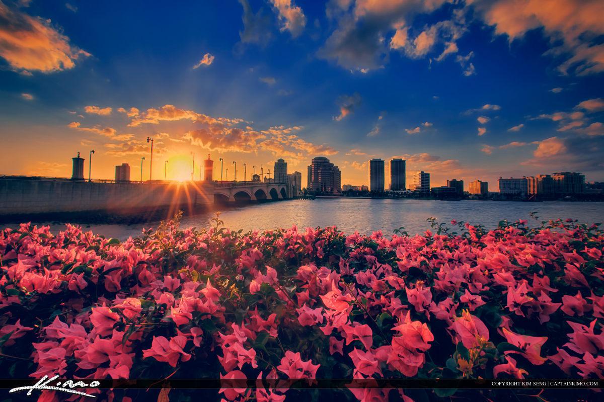 West Palm Beach Skyline Flower with Intracoastal Waterway