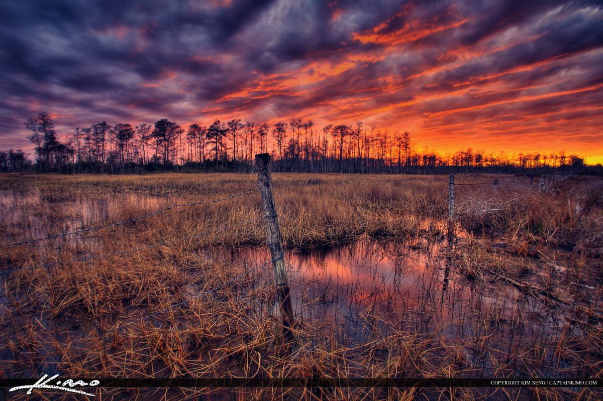 Loxahatchee Slough Wetlands Sunset Barb Wire Fence