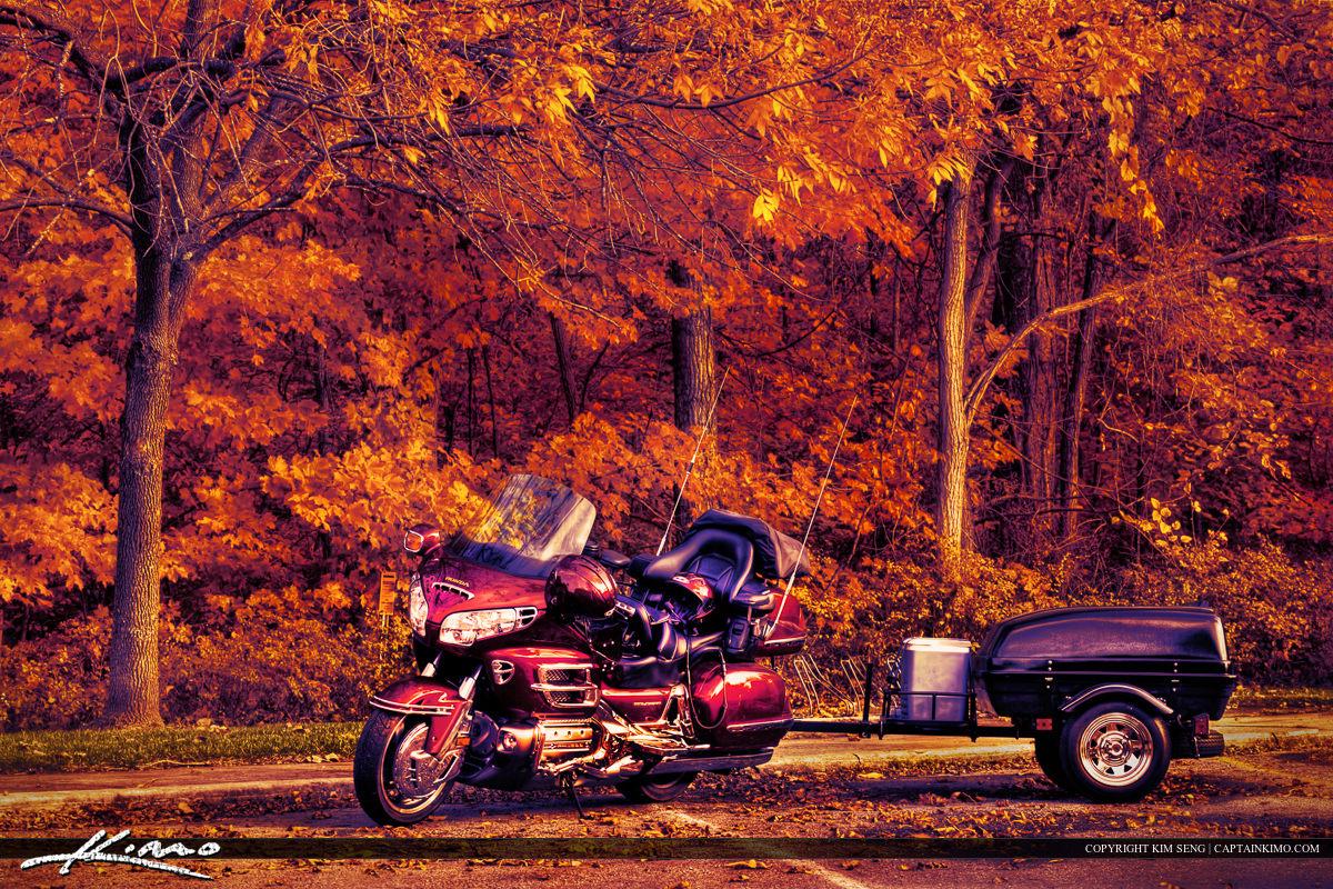 Honda Goldwing Motorcycle Autumn Fall Leaves West Virginia
