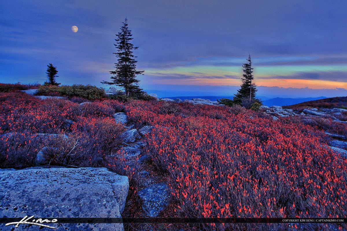 Dolly Sods West Virginia Mountain Sunrise