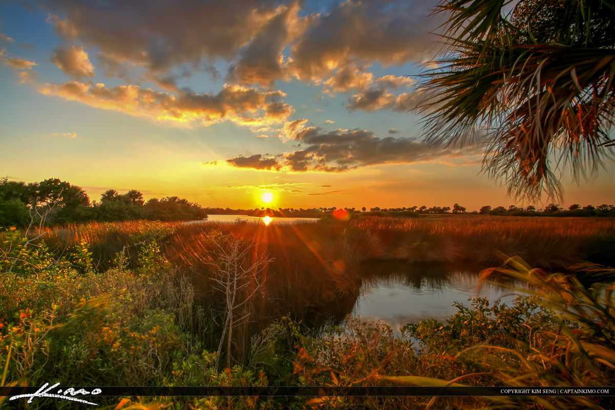 Wetlands Mosquito Lagoon Sunset Over Volusia County Florida