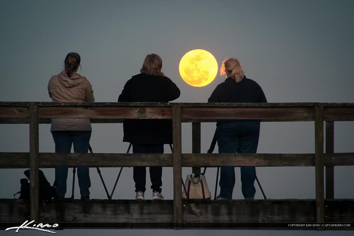 Photogs Under the Moon Light