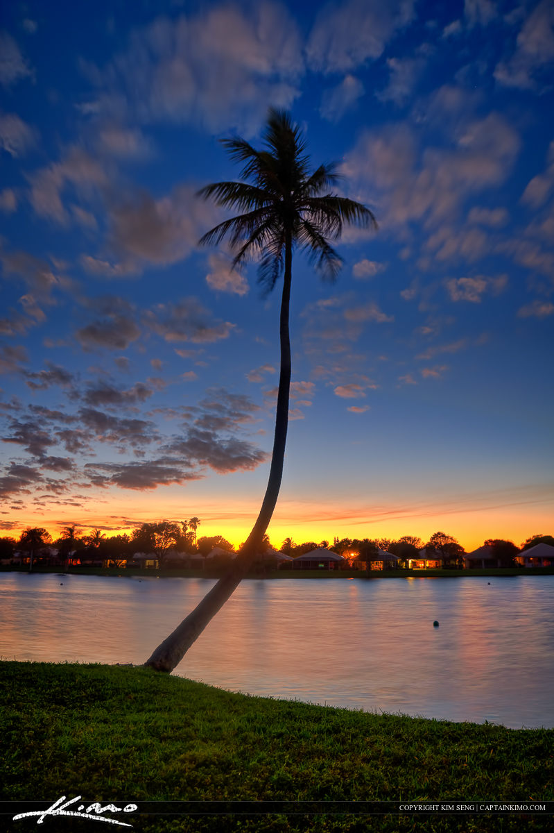 Waterfront Property Coconut Tree Florida Home