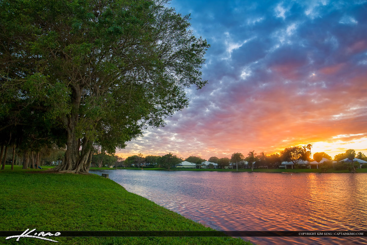 Palm Beach Gardens Sunset Over Homes